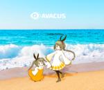 『Avacus×Summer』